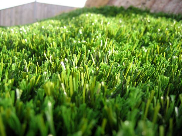 SmartGrass Photo Gallery